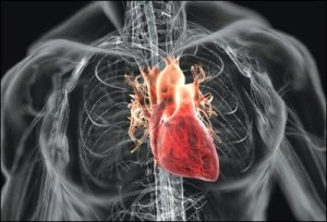 Gagal Jantung