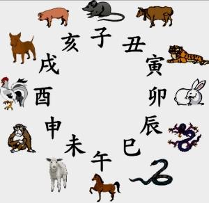 12 shengxiao